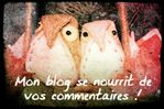Hiboux commentaires blog copie