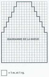 Diagramme queue du chat