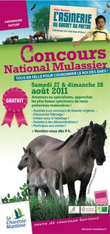 20110827-Flyer Concours Mulass HD1