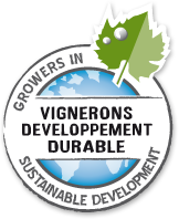 logo vdd2
