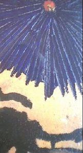Frag-1.jpg