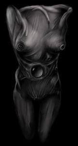 bodymorphe2