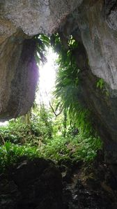 grotte-copie-1.jpg