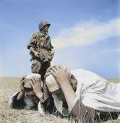 Guerre-d-Algerie-La-dechirure-9-FR2-Sondages---tendances.jpg