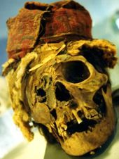 1330833_inca_skull_from_peru-1--copie-1.jpg