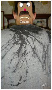 Zazou (3)