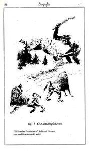 Fig 15 Geografía Básica