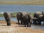 2012 South Africa J34 040