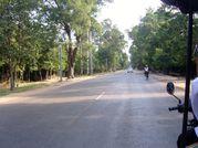 Viet Nam 2009 - Photos JD - J38 - Siem Reap 006 - Route