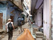 J27 Varanasi 005