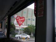 J19 - Las Vegas - Vegas street 4