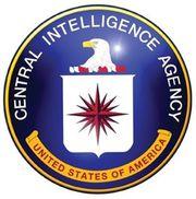 LOGO--CIA--insim-blog-2013.jpg