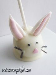 cake pop lapin de paque tout doux fluffy bunny cake pop (8)