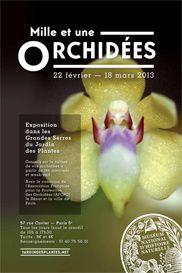 mille une orchidees jardin plantes 1