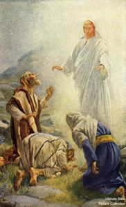 The Transfiguration 1179-51