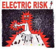 ELECTRICRISK-light.jpg