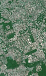 deforestation spot 2005