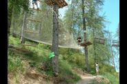 Photo activites nature - colmiane forest alpes-maritimes