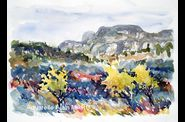 Alpilles-en-automne-Alain-Marc