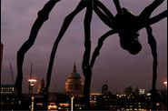 Ayres-no-graces-spider-London.jpg