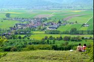 Bastberg-sommet-VOSGES-NORD-3_0618.jpg