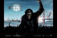 The Rise of the Planet of the Apes (Affiche internationale