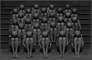 Misha Gordin-01-crowd54