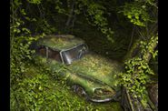 Peter Lippmann - Paradise Parking-01