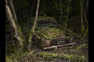 Peter Lippmann - Paradise Parking-03