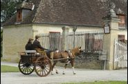 692 - Laurence DESMANETS (F). Un poney Pottock à un Contry Cart