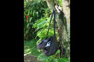bag-on-tree.jpg