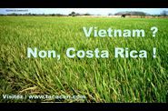 VIETNAM