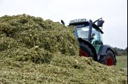 2011-ensilage-694
