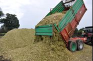 2011-ensilage-704
