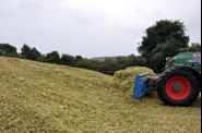 2011-ensilage-707