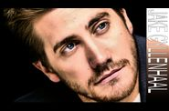 jake-gyllenhaal