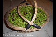 Panier olives 2-border-copie-2