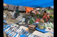 30---Centre-Sulawesi---Toraja 0168