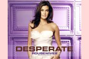 dh-desperate_housewives14.jpg