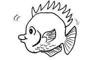 Dessin-coloriage animal : poisson