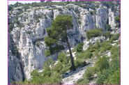 03-Calanques-En-Vaux--064.jpg