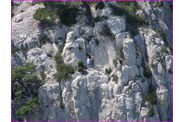 03-Calanques-En-Vaux--070.jpg