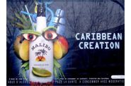 Affiche-Malibu-Caribbean-bleu.jpg