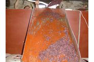 Vinification-200800061.jpg