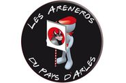 ARENEROS-PA-DEJ-F.ANDRE-13022011
