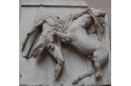 Athenes frise du Parthenon frieze (6)