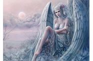 images-blog-anges