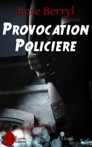 provocation-policiere.png