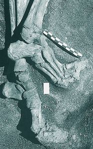Herculanum-victims-of-vesuvius-in-791.jpg