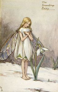 23931267_1209562317_The_Snowdrop_FairyCicely_Mary_Barker.jpg